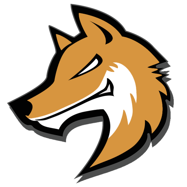 FoXRaiD Syndicate